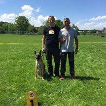 27 Championat des DMC of Deutscher Malinois Club in Hechingen 2016