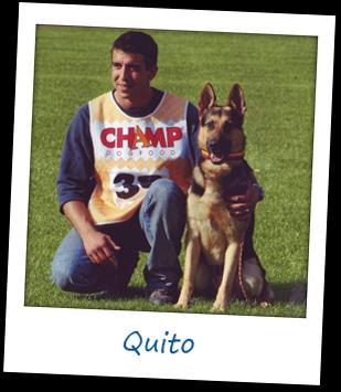 Quito vom Salztalblick